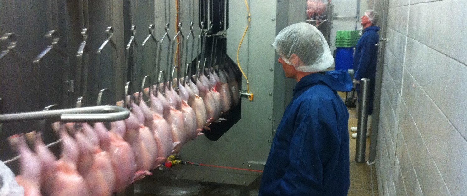 IA Poultry Process