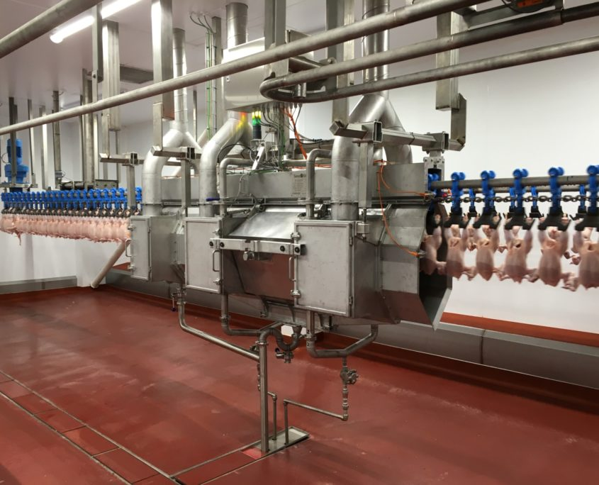 IA Poultry II Campylobacter reduction maschine
